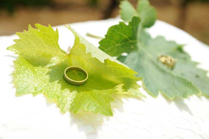 Matrimonio Country Tema Vino: Fedi nuziali a grappolo d'uva