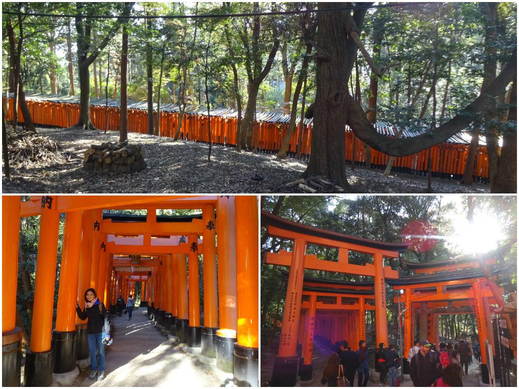 japan honeymoon Fushimi Inari Shrine