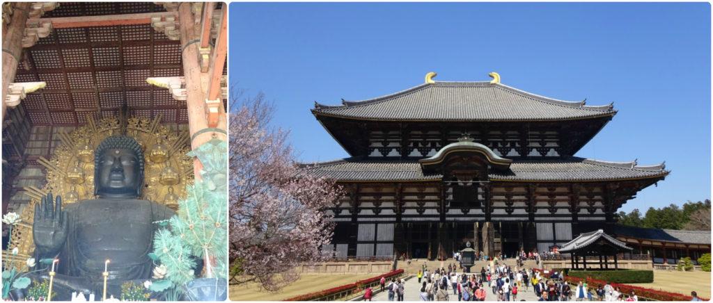 Japan honeymoon nara