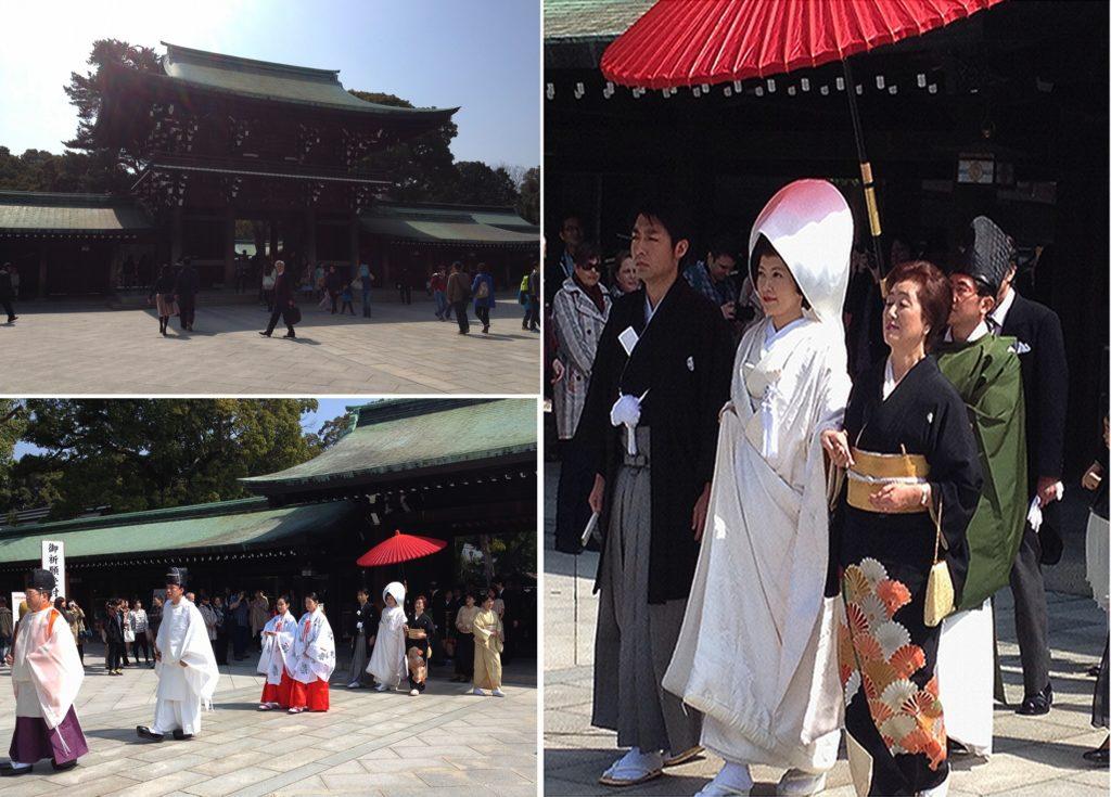 japan honeymoon Meiji Jingu Shrine