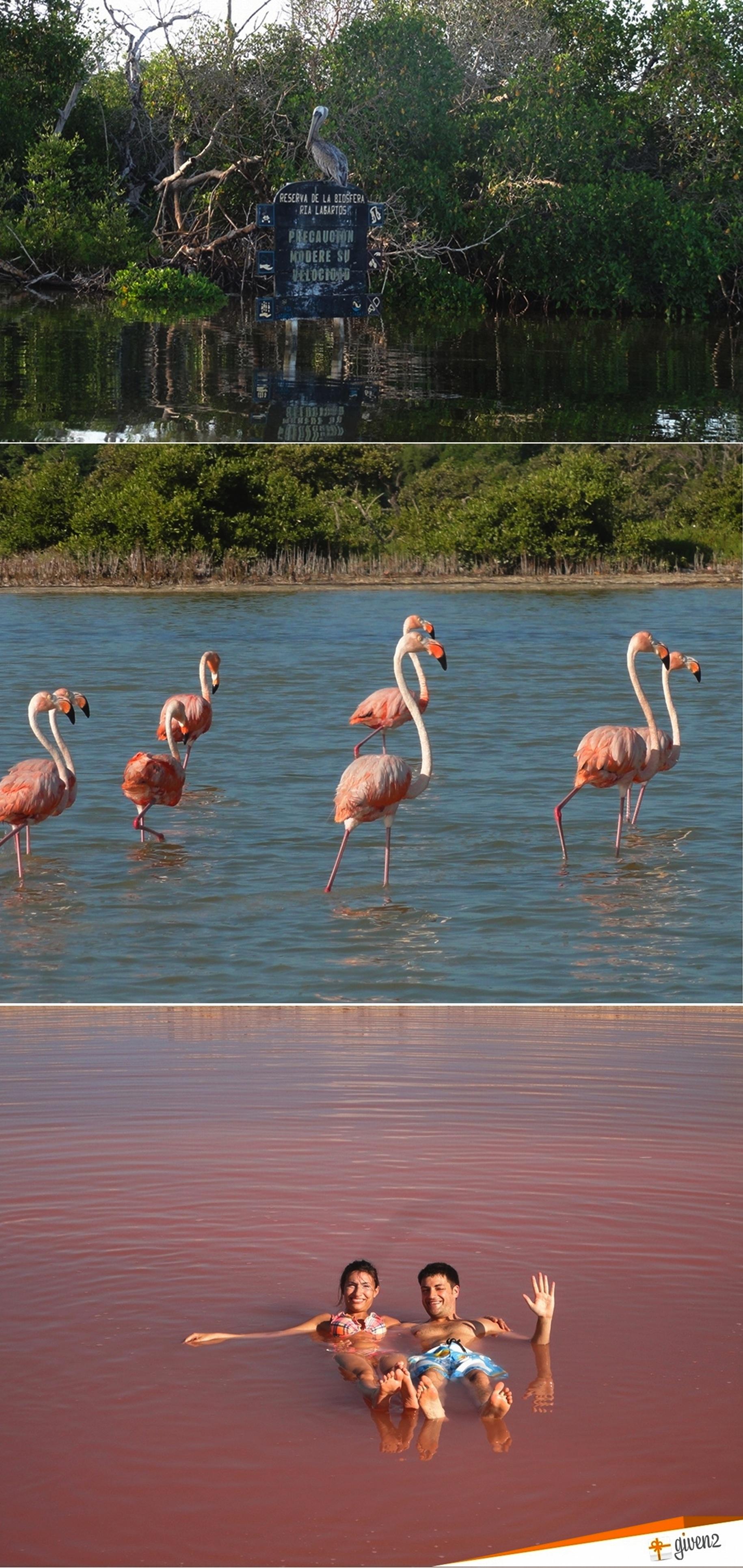 honeymoon in Mexico Reserva de la Biosfera Ria Lagartos