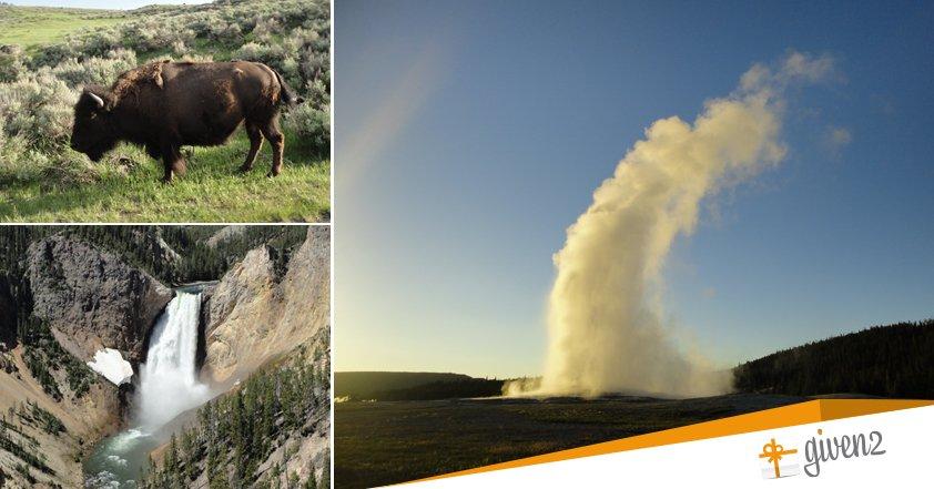 Viaggio di nozze in America: Yellowstone