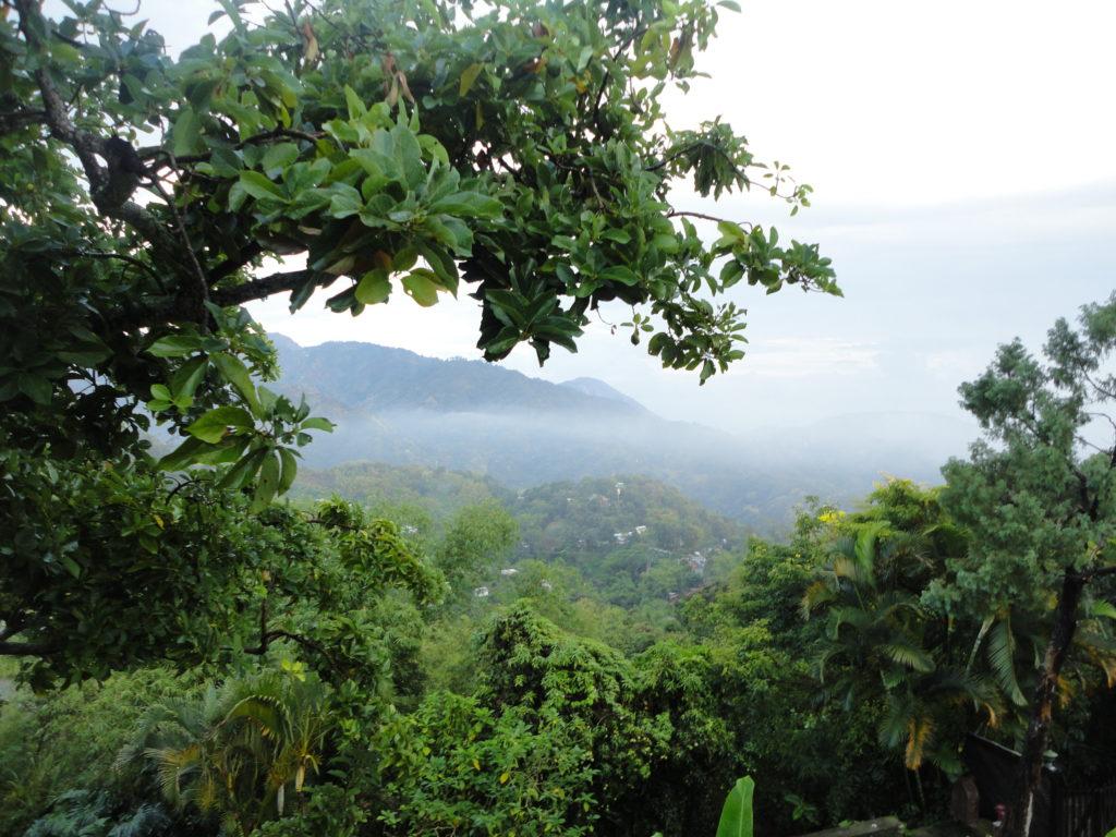 Viaggio in Jamaica | Montagne blu