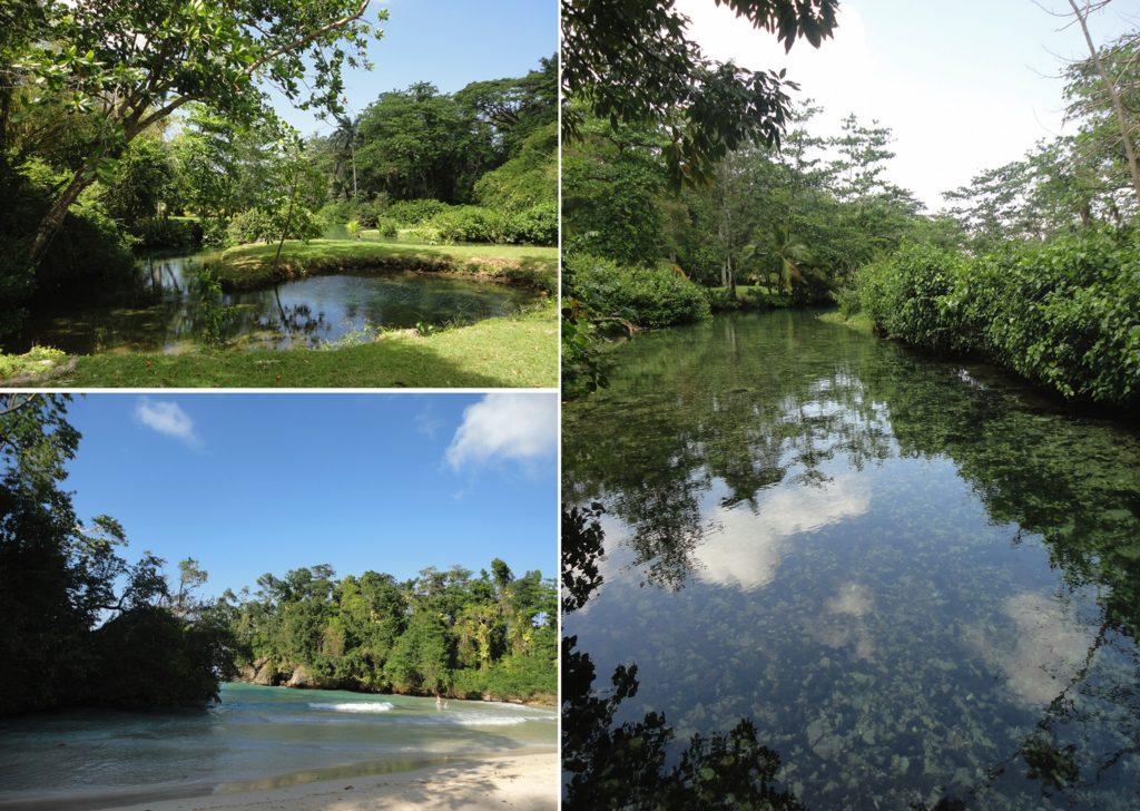 Viaggio in Jamaica | Frenchman's cove